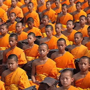 buddhist monks meditating