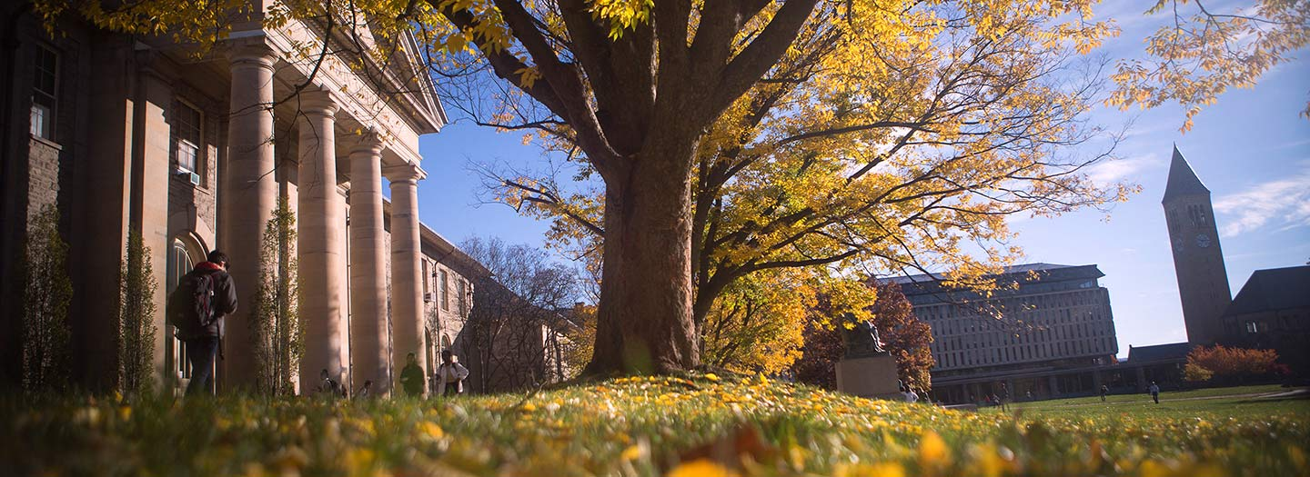Students walk past Goldwin Smith Hall in fall